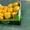 продаем перец из Испании - Изображение #5, Объявление #1337540