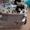 Запчасти Thermo King Carrier Kubota Yanmar Разборка холодильных агрегатов  #1603998