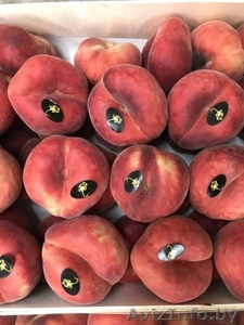 Продаем парагвайский персик из Испании - Изображение #3, Объявление #1406258