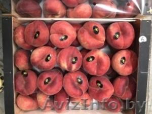 Продаем парагвайский персик из Испании - Изображение #5, Объявление #1406258