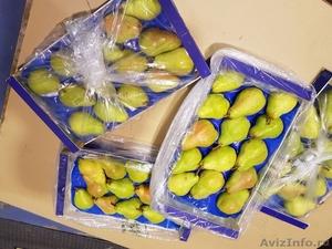 Продаю груши из Испании - Изображение #3, Объявление #1406266