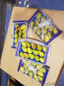 Продаю груши из Испании - Изображение #6, Объявление #1406266
