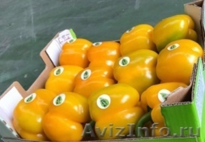 продаем перец из Испании - Изображение #1, Объявление #1337540