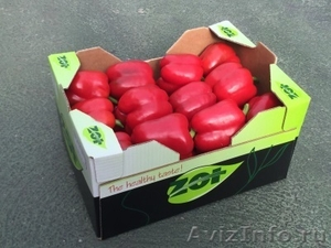 продаем перец из Испании - Изображение #4, Объявление #1337540