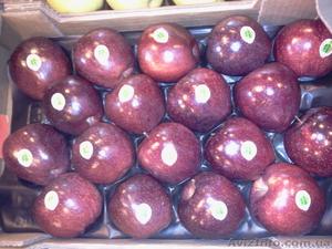 Продаем яблоки из Испании - Изображение #1, Объявление #1406263