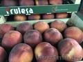 Продаем персики из Испании - Изображение #4, Объявление #1366004