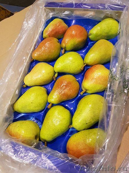 Продаю груши из Испании, Объявление #1406266