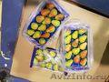 Продаю груши из Испании - Изображение #2, Объявление #1406266