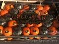 продаем мандарины из Испании(АКЦИЯ) - Изображение #3, Объявление #1351630