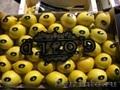 продаем лимон из Испании - Изображение #3, Объявление #1337537