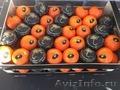 продаем мандарины из Испании - Изображение #4, Объявление #1337526