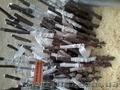 Підщепа м9,  Голландської селекції,  прививка,  сорт під замовлення.