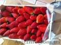 Продаем  клубнику из Испании