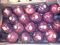 Продаем яблоки из Испании, Объявление #1406263